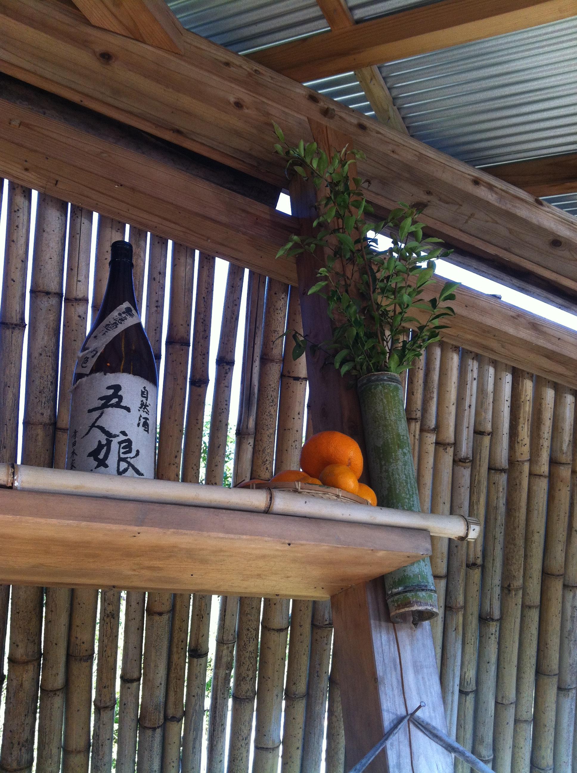 「 みかん山収穫祭 」