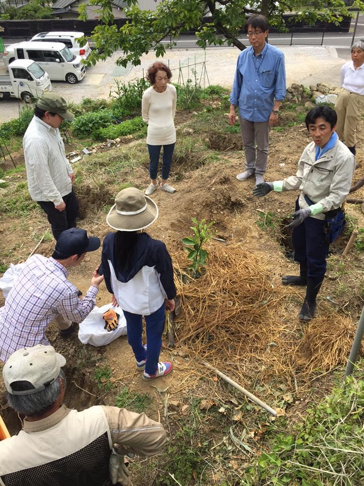 第4回 土の再生ワークショップ」〜自然栽培の土づくり、とは?〜