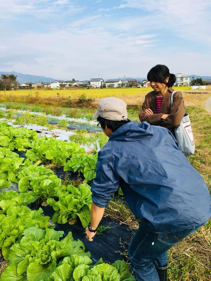 無農薬栽培農家ツアー♪in南国