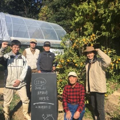 「11月のみかん山自然栽培研究会